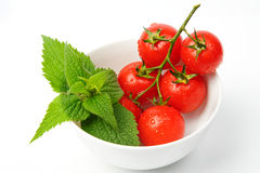 Basil and tomatoes in bowl Royalty Free Stock Photography