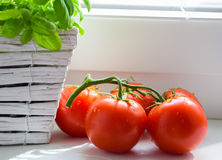 Basil and tomatoes,cherry tomato. Italian cuisine,basil and tomatoes royalty free stock photo