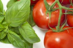 Basil&Tomatoes Close-up Stock Photography