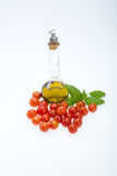 Basil, tomatoes and olive oil Stock Images