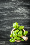Basil in a wooden mortar Royalty Free Stock Photo