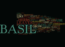 Basil Word Cloud Concept Photographie stock