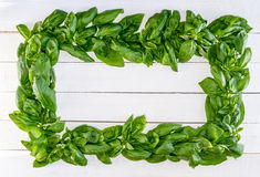 Basil Wreath fresco nas placas rústicas brancas Imagem de Stock Royalty Free