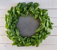 Basil Wreath fresco rustico Fotografia Stock