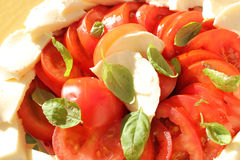 Basilic et mozzarella de tomates Photos stock