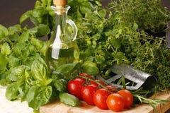 Basilic et tomate Images stock