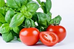 Basilic et tomates frais image stock
