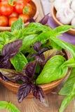 Basilic et tomates frais d'agriculteurs Photographie stock