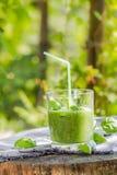 Basilic frais de céleri de concombre de mousse Image stock