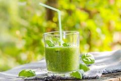 Basilic frais de céleri de concombre de mousse Images stock