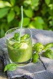 Basilic frais de céleri de concombre de mousse Photos stock