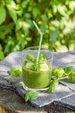 Basilic frais de céleri de concombre de mousse Images libres de droits