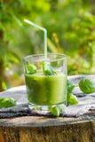 Basilic frais de céleri de concombres de smoothie vert images libres de droits