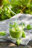 Basilic frais de céleri de concombres de smoothie vert image stock