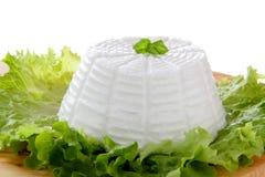 Basilic italien d'extrémité de salade verte de ricotta Photographie stock libre de droits