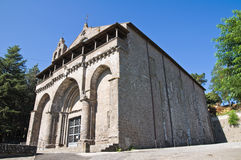 Basilica av St. Flaviano. Montefiascone. Lazio. Det arkivfoto