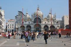 basilica di marco piazza san venice Royaltyfria Foton