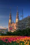 Basilica Downtown Ottawa Tulip Festival Stock Images