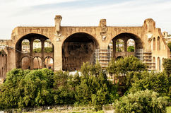 The Basilica of Maxentius and Constantine in Rome Royalty Free Stock Photography
