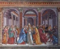 Basilica medievale degli affreschi di Santa Maria Novella - Firenze Immagini Stock Libere da Diritti