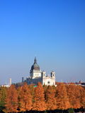 Basilica of Saint Mary in Minneapolis. Fall season Royalty Free Stock Images