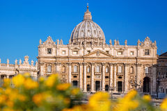 Basilica of Saint Peter in the Vatican with spring flowers, Rome, Italy Stock Photography