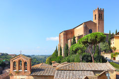 Basilica in Siena Royalty Free Stock Images