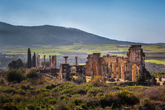 The Basilica of Volubilis. View of the Basilica, Volubilis, Morocco Stock Photos