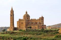 basilicapinu ta Royaltyfri Fotografi