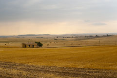 Basilicata (Matera) - Bauernhof am Sommer Stockfotos