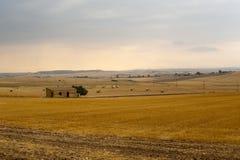 Basilicata (Matera) - exploração agrícola no verão Fotos de Stock