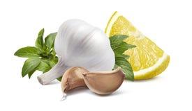 Basilico capo del limone dell'aglio su fondo bianco Fotografie Stock Libere da Diritti