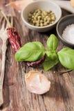 basilico con il balgarskih del pepe e del sale, aglio Immagine Stock Libera da Diritti