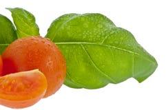 Basilico con il piccolo pomodoro (con il percorso di residuo della potatura meccanica) Immagini Stock