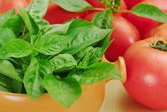 Basilico e pomodori fotografie stock