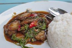 Basilico fritto con carne di maiale Fotografia Stock