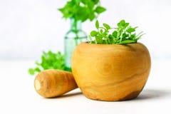 Basilico verde del limone in un mortaio di legno su un fondo leggero Dietro il basilico nella bottiglia Fotografia Stock
