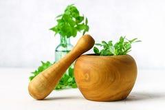Basilico verde del limone in un mortaio di legno su un fondo leggero Dietro il basilico nella bottiglia Fotografia Stock Libera da Diritti