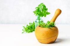 Basilico verde del limone in un mortaio di legno su un fondo leggero Dietro il basilico nella bottiglia Fotografie Stock