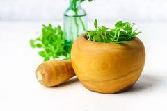 Basilico verde del limone in un mortaio di legno su un fondo leggero Dietro il basilico nella bottiglia Immagine Stock