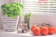 Basilicum en tomaten, kersentomaat Stock Foto's