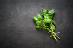 Basilicumbladeren bij dark Stock Fotografie