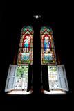Basiliek Stock Afbeelding