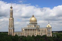 Basiliek in Korstmos Royalty-vrije Stock Foto's