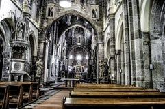Basiliek van Heilige Procopius in Trebic Royalty-vrije Stock Fotografie
