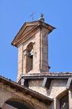 Basiliek van St. Mary van Steccata. Parma. stock fotografie
