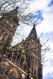 Basiliek van St Peter en St Paul Church, Praag, Tsjechische Republiek Royalty-vrije Stock Afbeelding