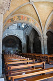 Basilika av St. Flaviano. Montefiascone. Lazio. Italien. Royaltyfria Foton