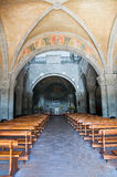Basilika av St. Flaviano. Montefiascone. Lazio. Italien. arkivbild