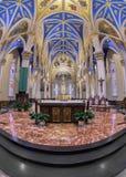 Basilika des heiligen Herzens bei Notre Dame lizenzfreie stockfotografie